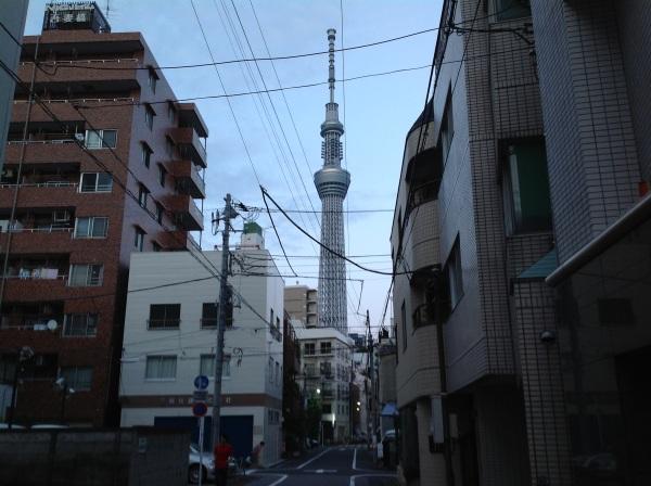 2424_裏道がまっすく塔まで続くのでゆったりいけるがここで終わり.jpg
