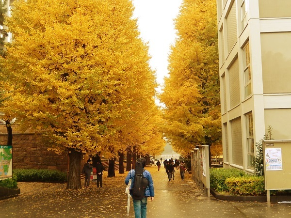 KEIO_Univ_IDEA_000a.jpg