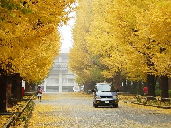 KEIO_Univ_IDEA_000c.jpg