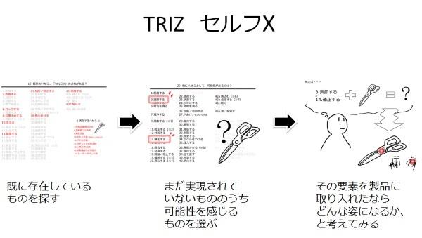 TRIZ_SelfX.jpg