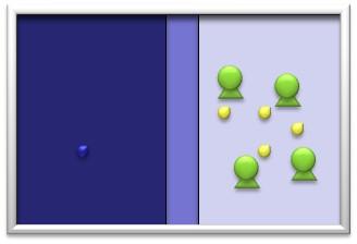idea_shell03.jpg