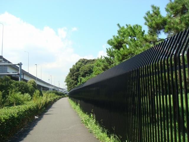 natsu_DSC00481.jpg